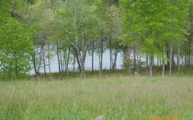303459 Blairsville Lake Front Lot
