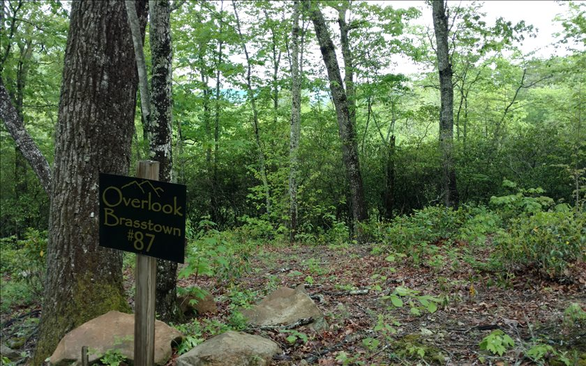 267460 Brasstown Vacant Lot