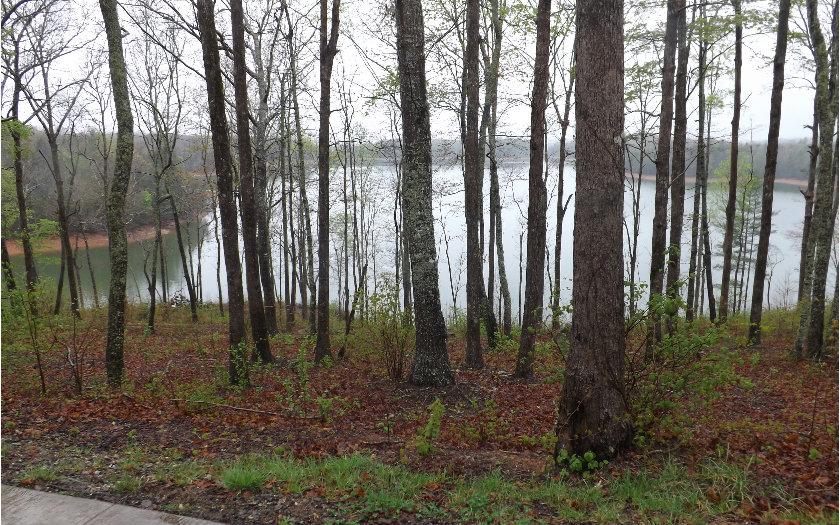246861 Blairsville Lake Front Lot