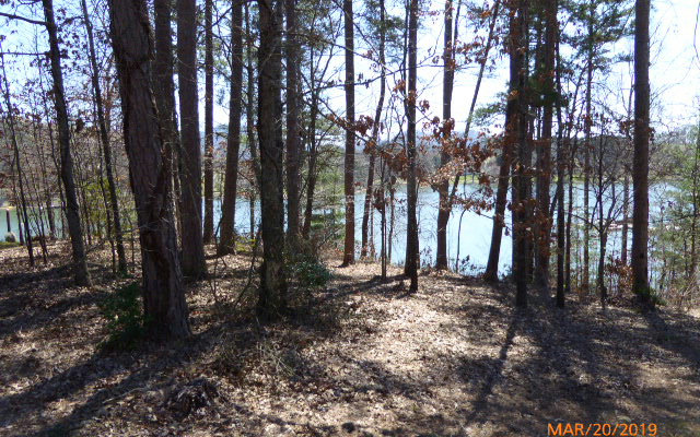 286661 Hayesville Lake Front Lot