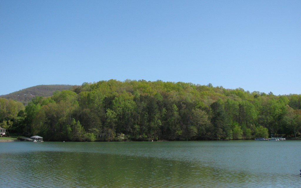 277662 Young Harris Lake Front Lot