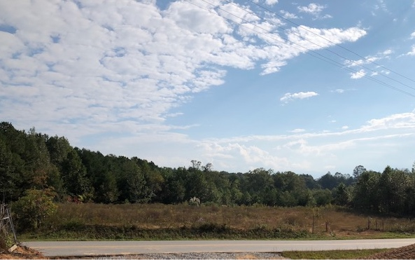 282562 Blairsville Acreage