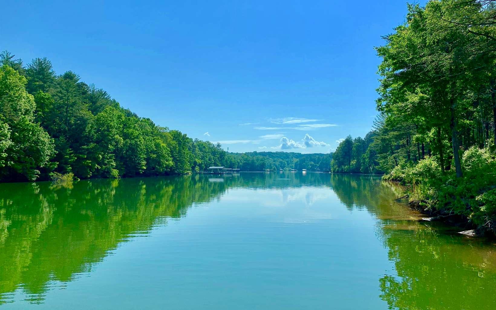 309362 Blairsville Lake Front Lot