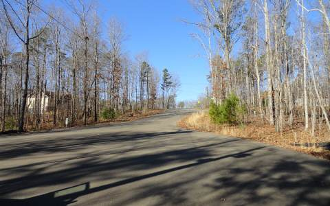 234964 Ellijay Vacant Lot