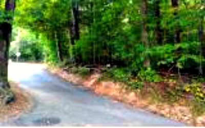 251564  Commercial Lot