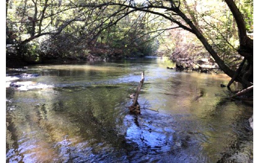 272664 Ellijay River Front