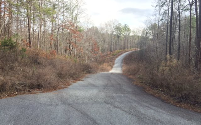283064 Ellijay Subdivision being developed