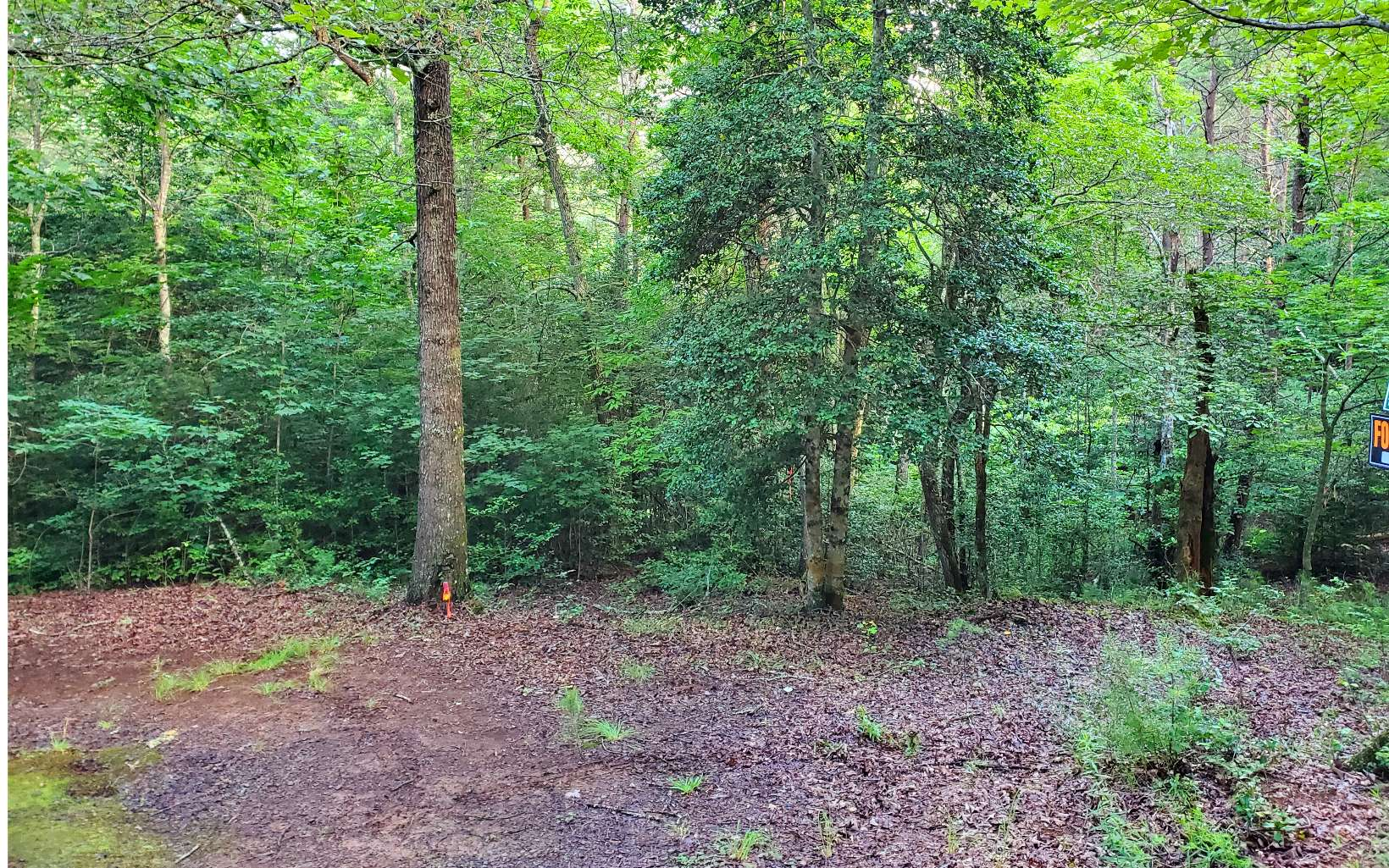 308664 Hayesville River Access Lot