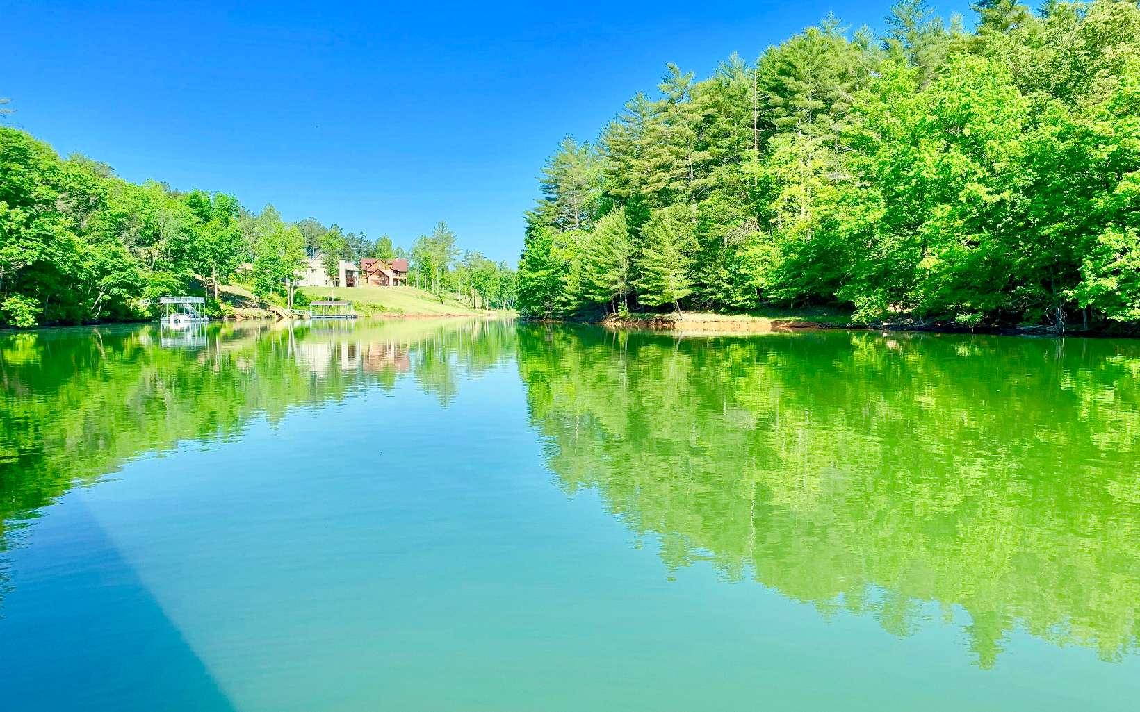 309364 Blairsville Lake Front Lot