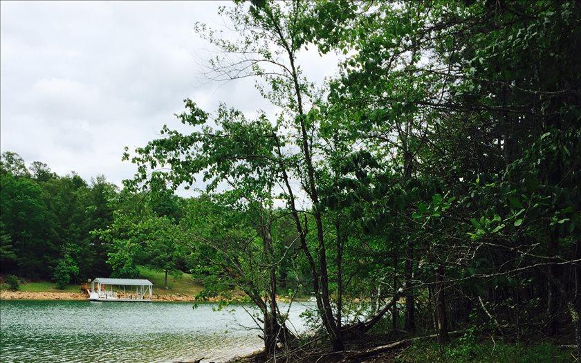 268466 Blairsville Lake Front Lot