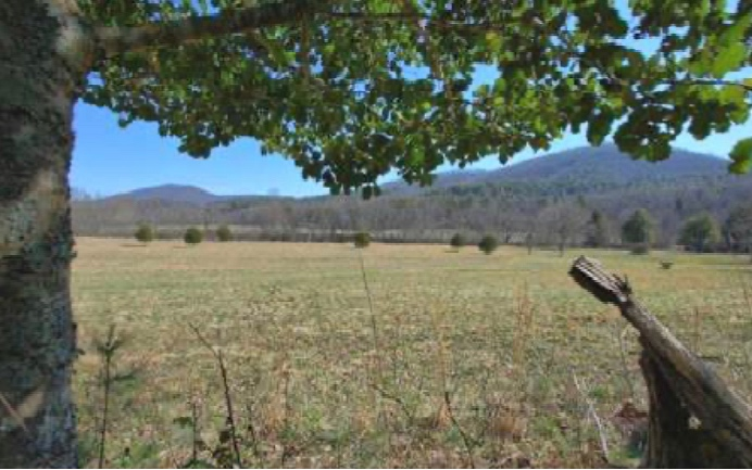 299266 Blue Ridge River Front