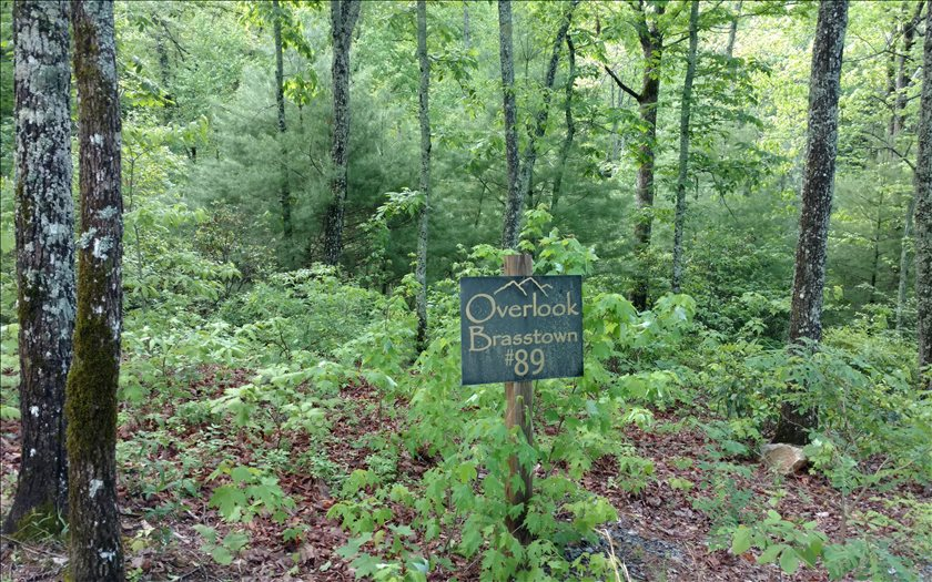 267467 Brasstown Vacant Lot
