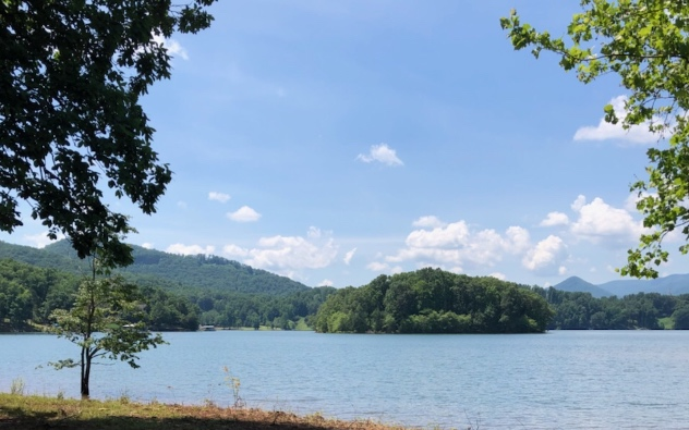 278567 Hiawassee Lake Front Lot