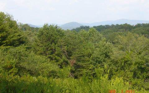 214172 Ellijay, GA Vacant Lot