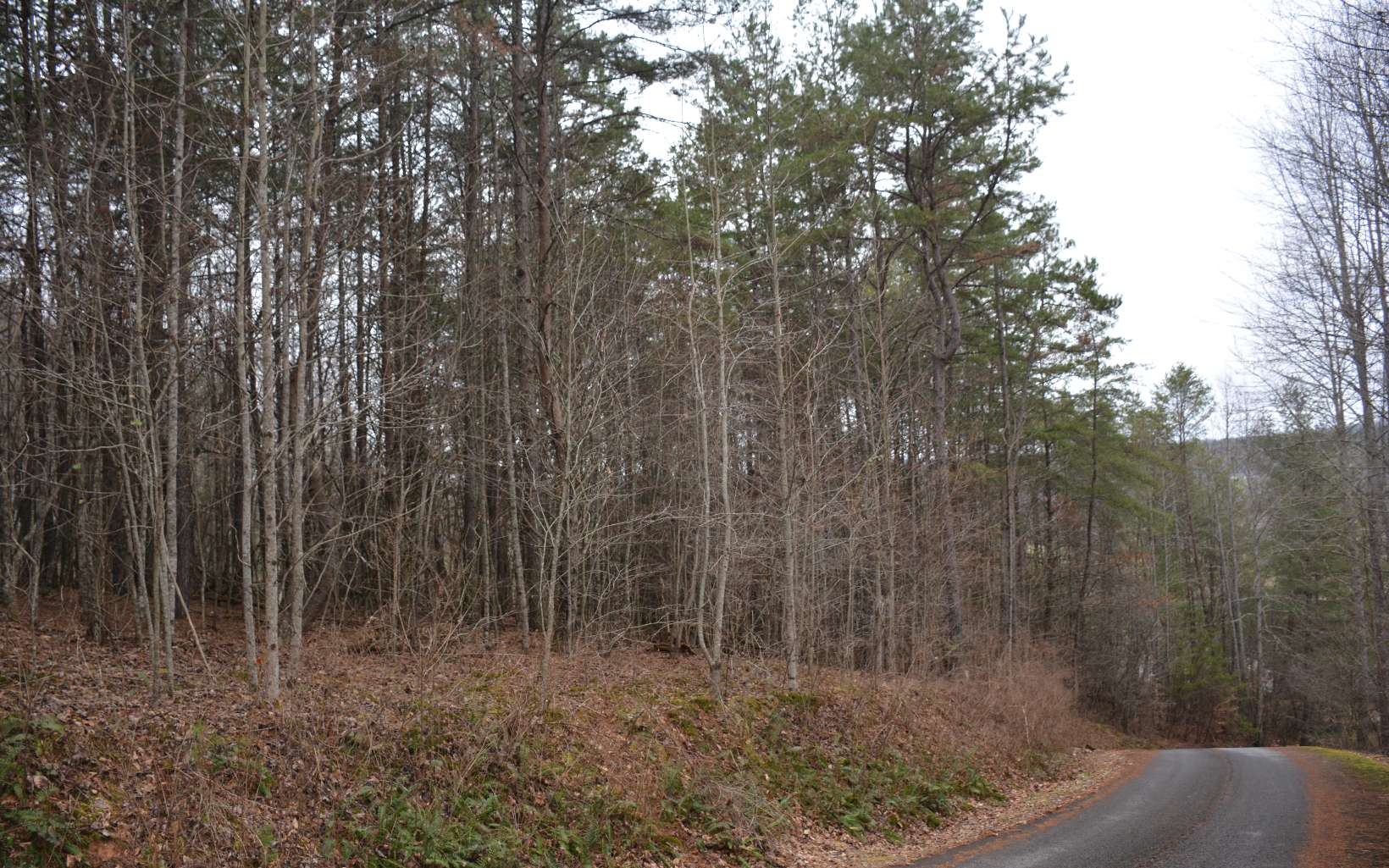 284672 Morganton Vacant Lot