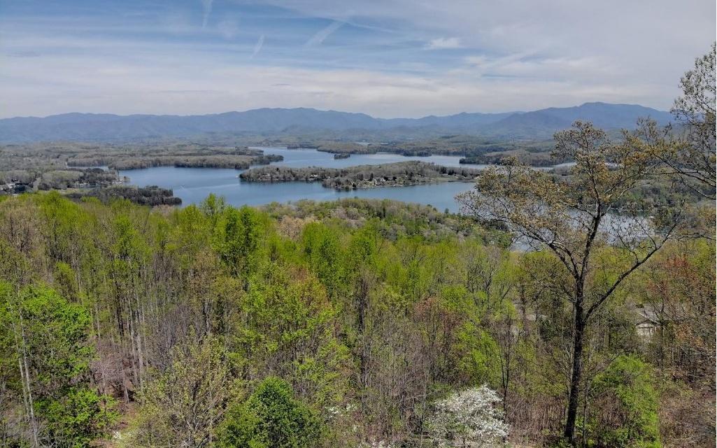 849 FROG POND RD,Hiawassee,GA, US Blue Ridge, Georgia / Home