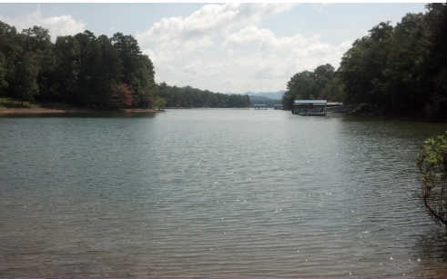 228273 Blairsville Lake Front Lot