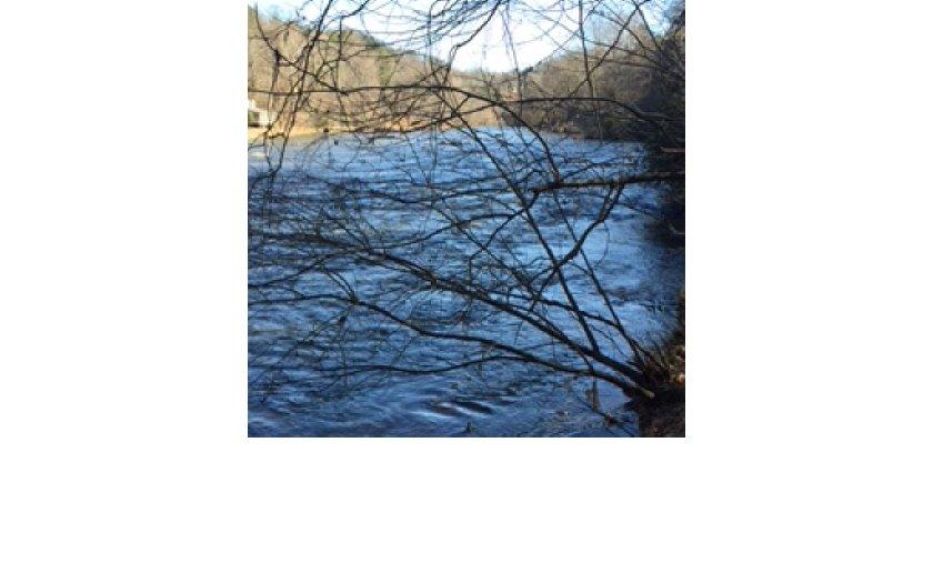 275073 Ellijay River Front