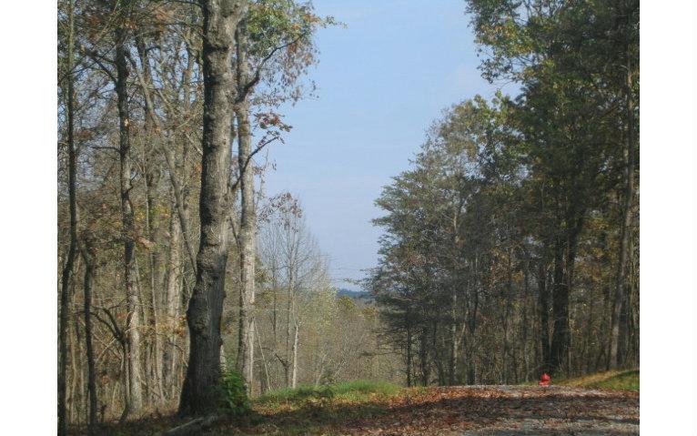 284673 Blue Ridge