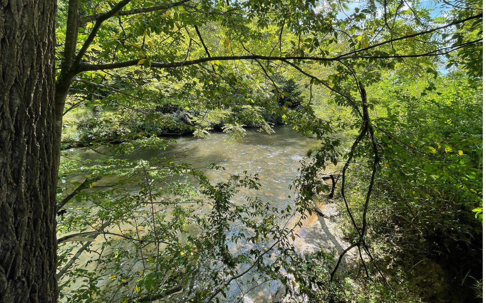 310675 Ellijay River Front