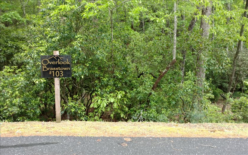 267477 Brasstown Vacant Lot