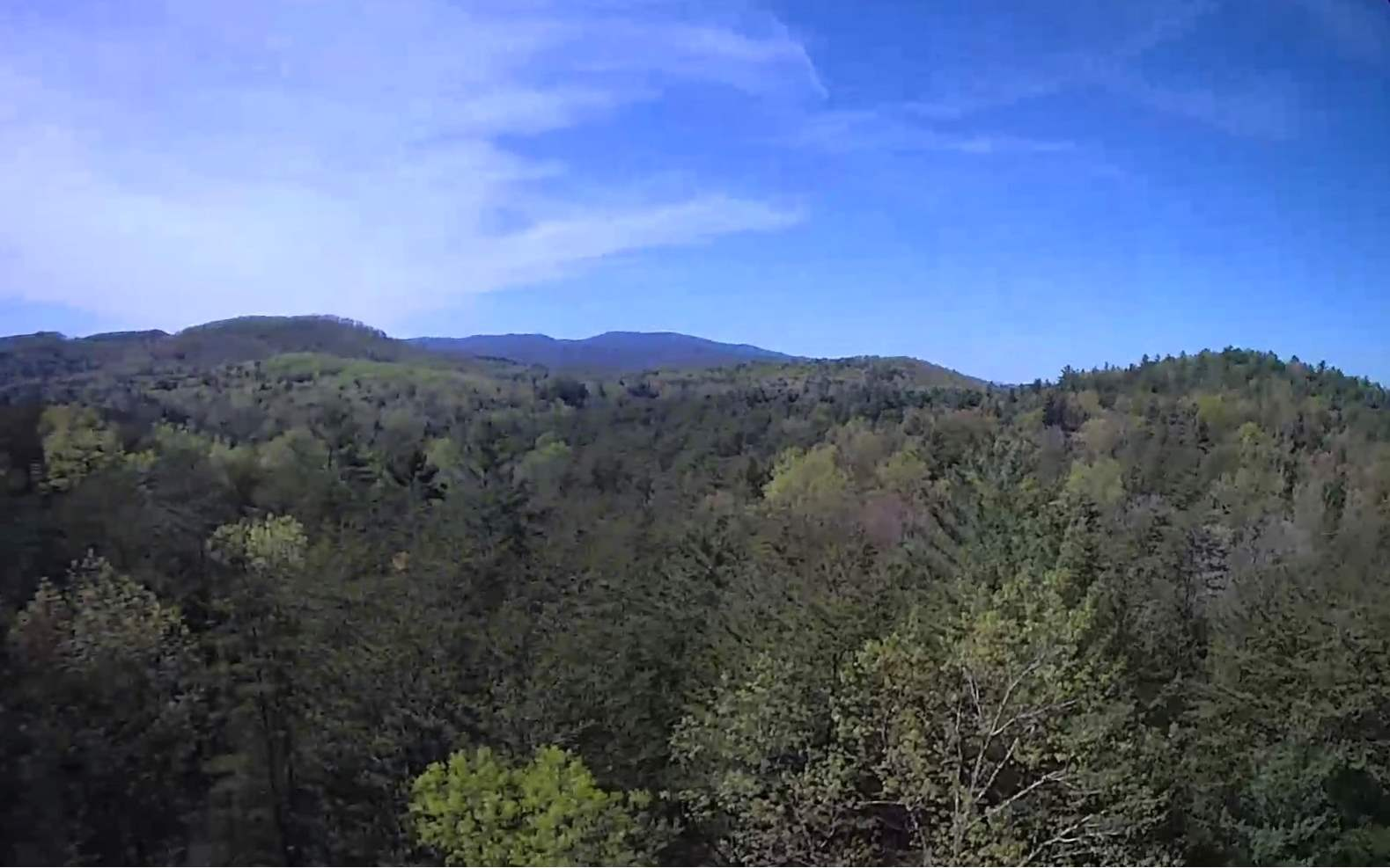 287378 Blue Ridge Acreage