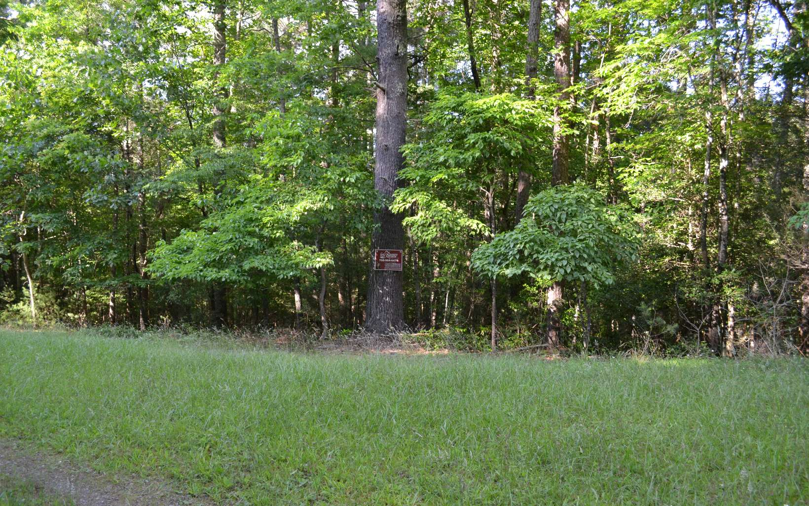 289178 Suches Vacant Lot