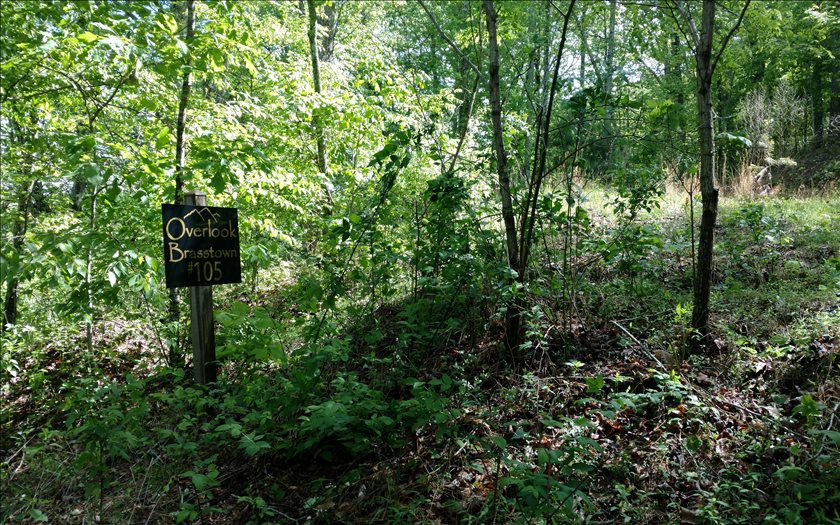 267479 Brasstown Vacant Lot