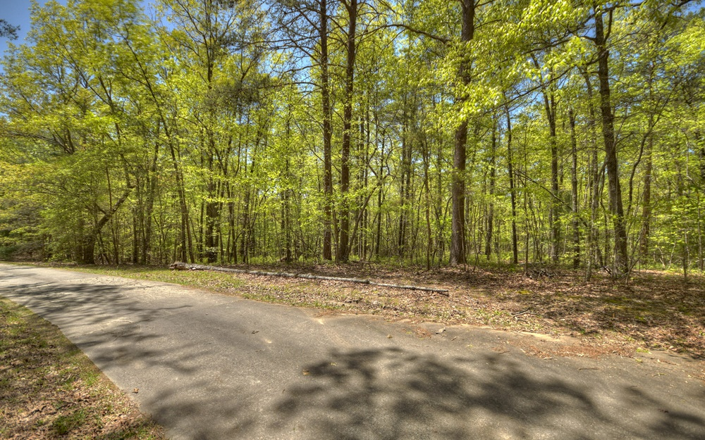 296879 Blue Ridge Vacant Lot