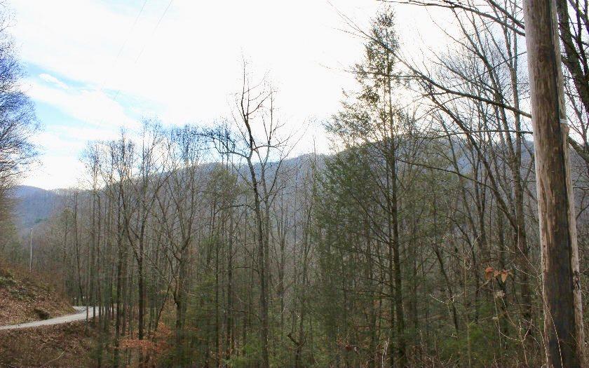 274480 Blue Ridge