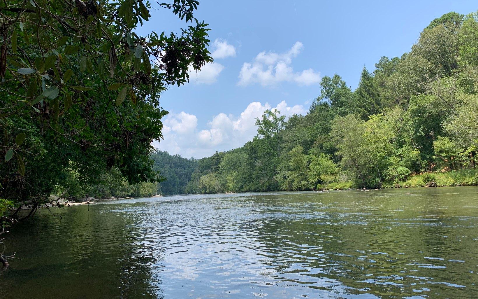 309781 Ellijay River Front