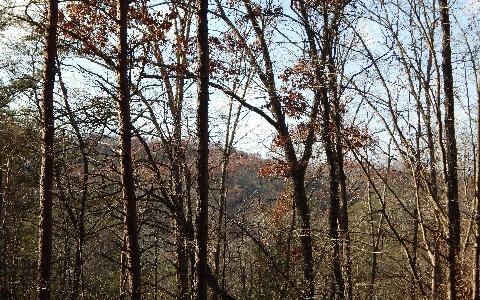 243782 Blue Ridge Acreage