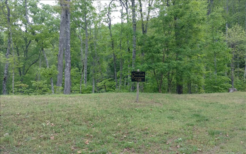 267482 Brasstown Vacant Lot