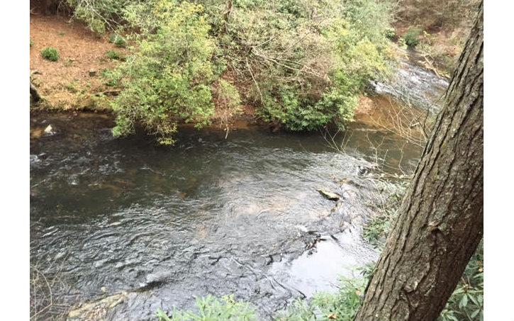 284782 Ellijay River Front