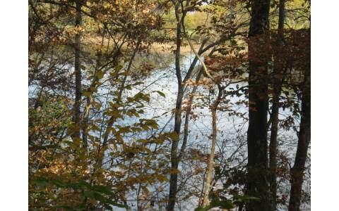 223983 Blairsville Lake Front Lot