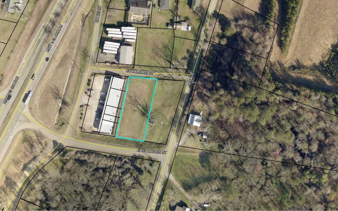 300384 East Ellijay Commercial
