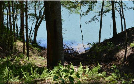 240787 Blairsville Lake Front Lot