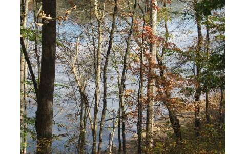 223988 Blairsville Lake Front Lot