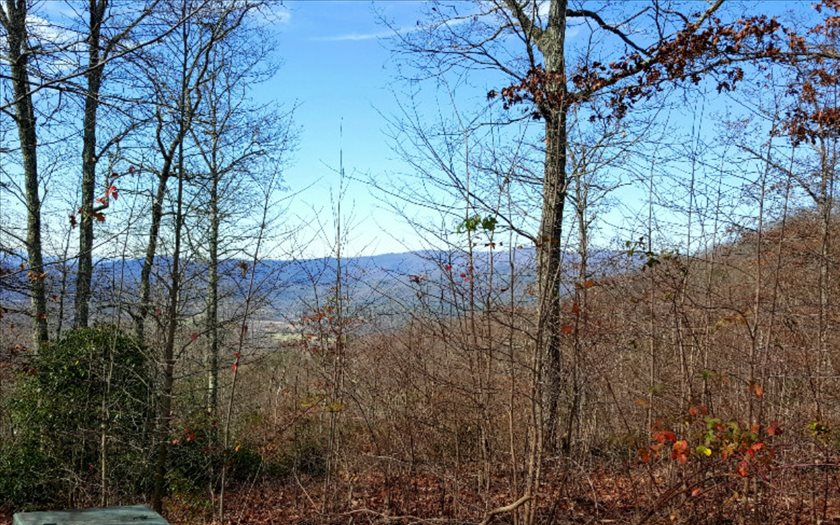 267488 Hayesville Vacant Lot
