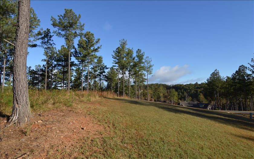 272888 Blairsville Lake Front Lot
