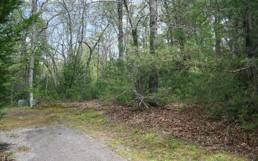 274490 Hayesville Vacant Lot