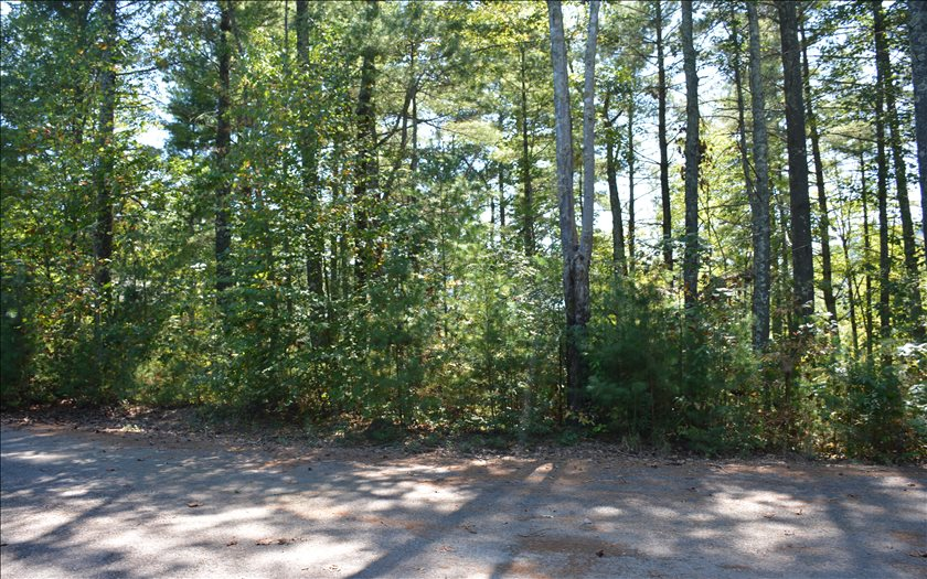 272191 Blue Ridge Vacant Lot