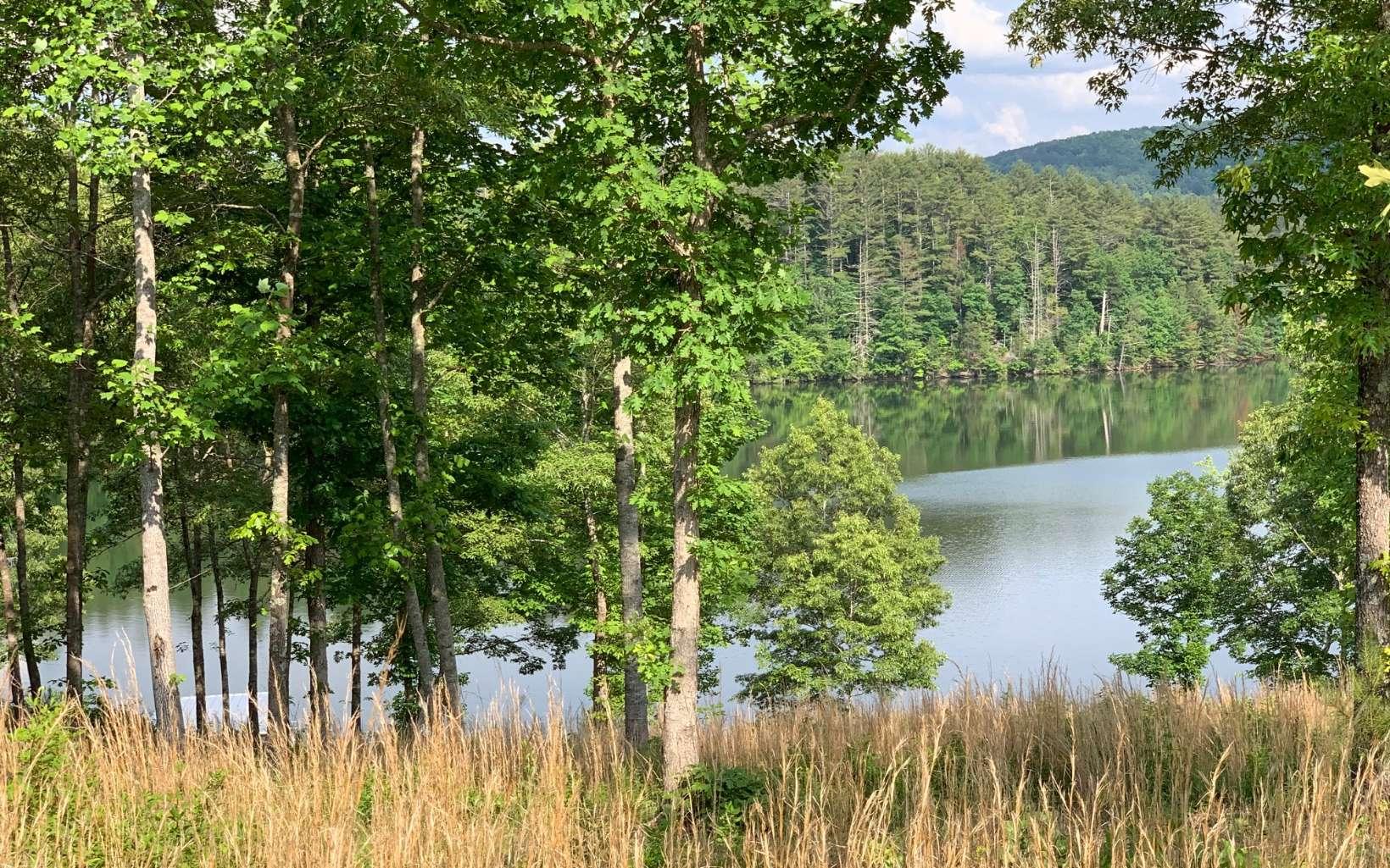 297891 Blairsville Lake Front Lot