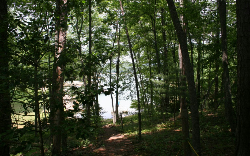 252493 Blairsville Lake Front Lot