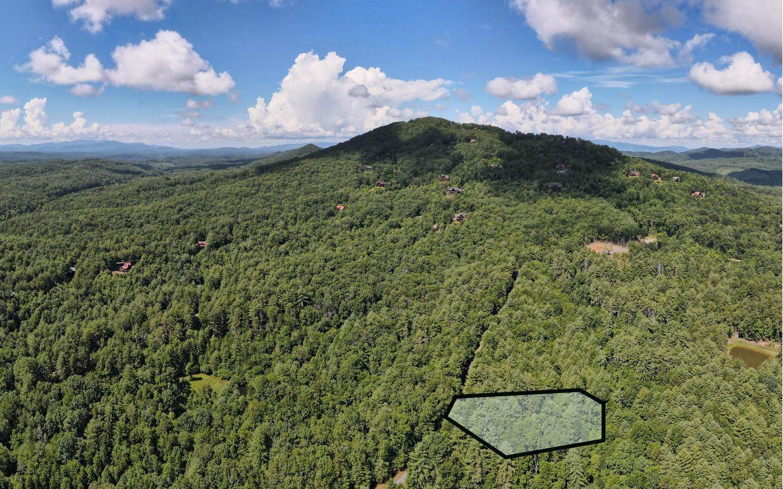 299393 Mineral Bluff