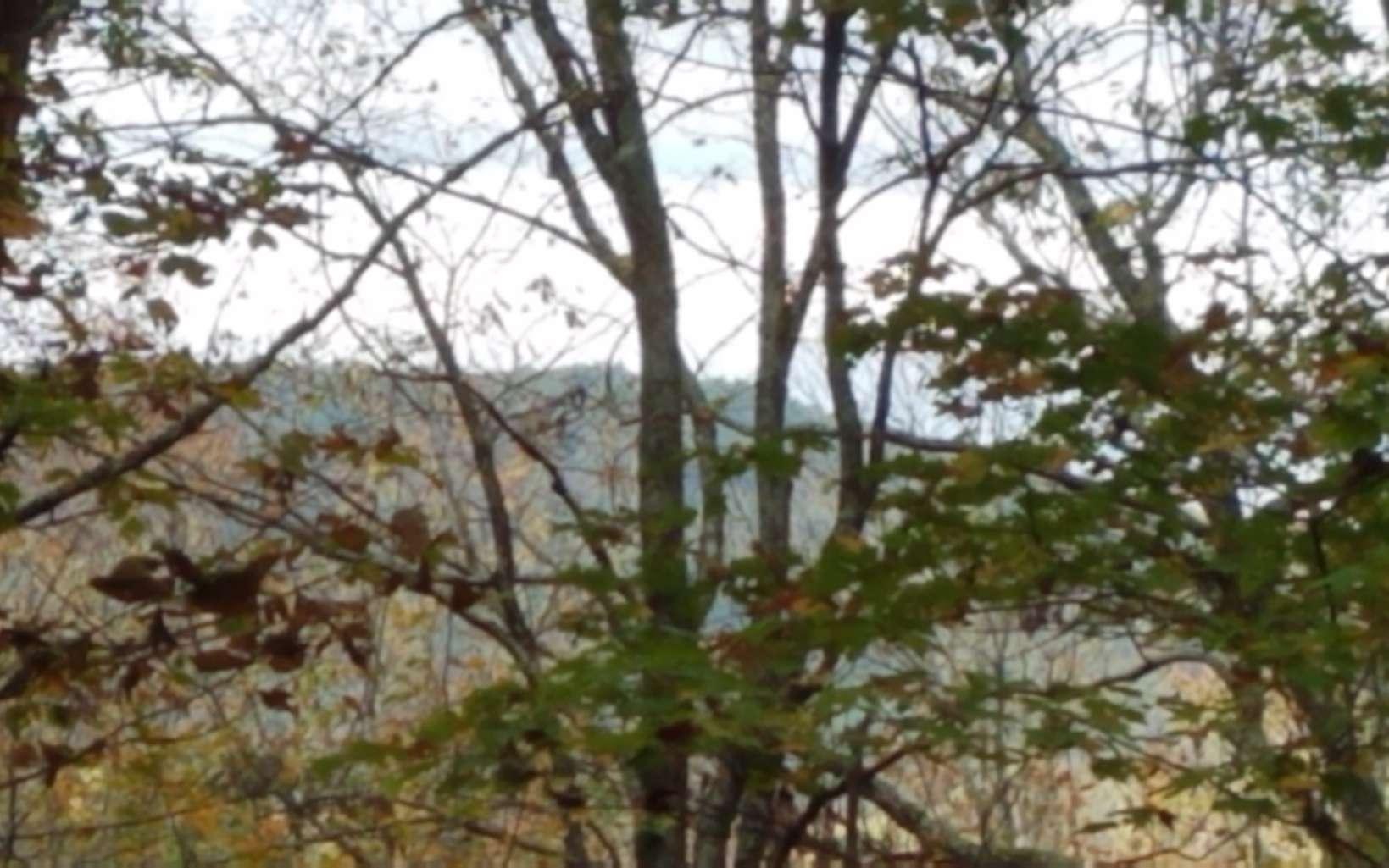 301793 Blue Ridge