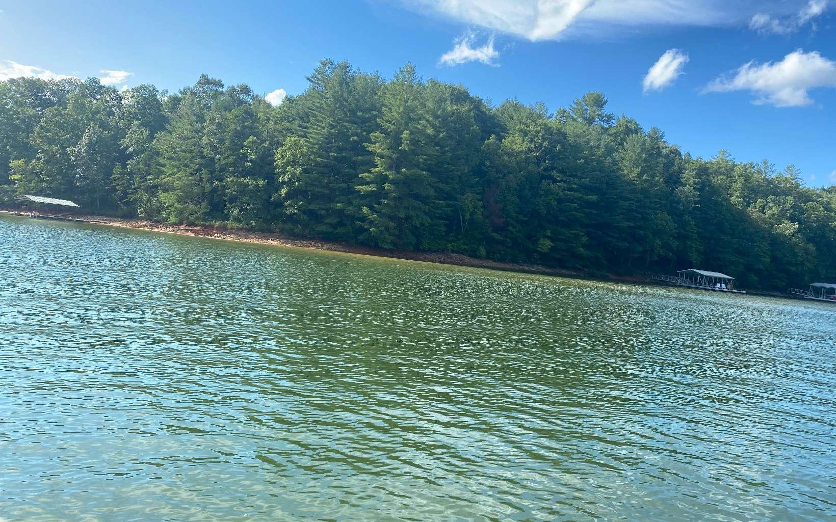 310993 Blairsville Lake Front Lot