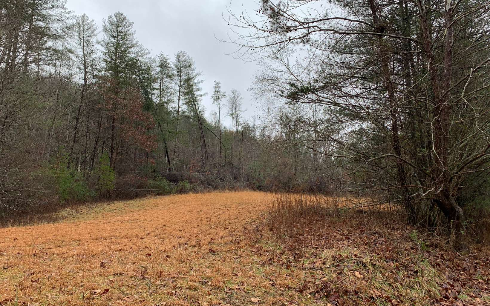 274794 Hayesville River Access Lot