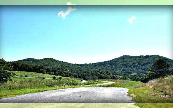 275195 Blue Ridge
