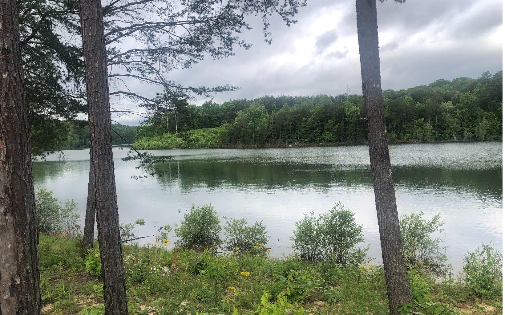 297495 Blairsville Lake Front Lot